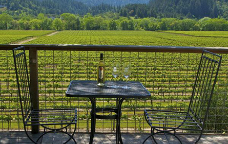 California's Sonoma Wine Country Still Open For business