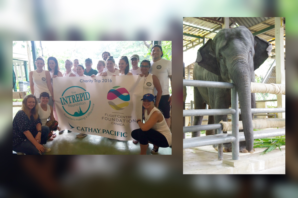Flight Centre raises $30K for elephants in Thailand