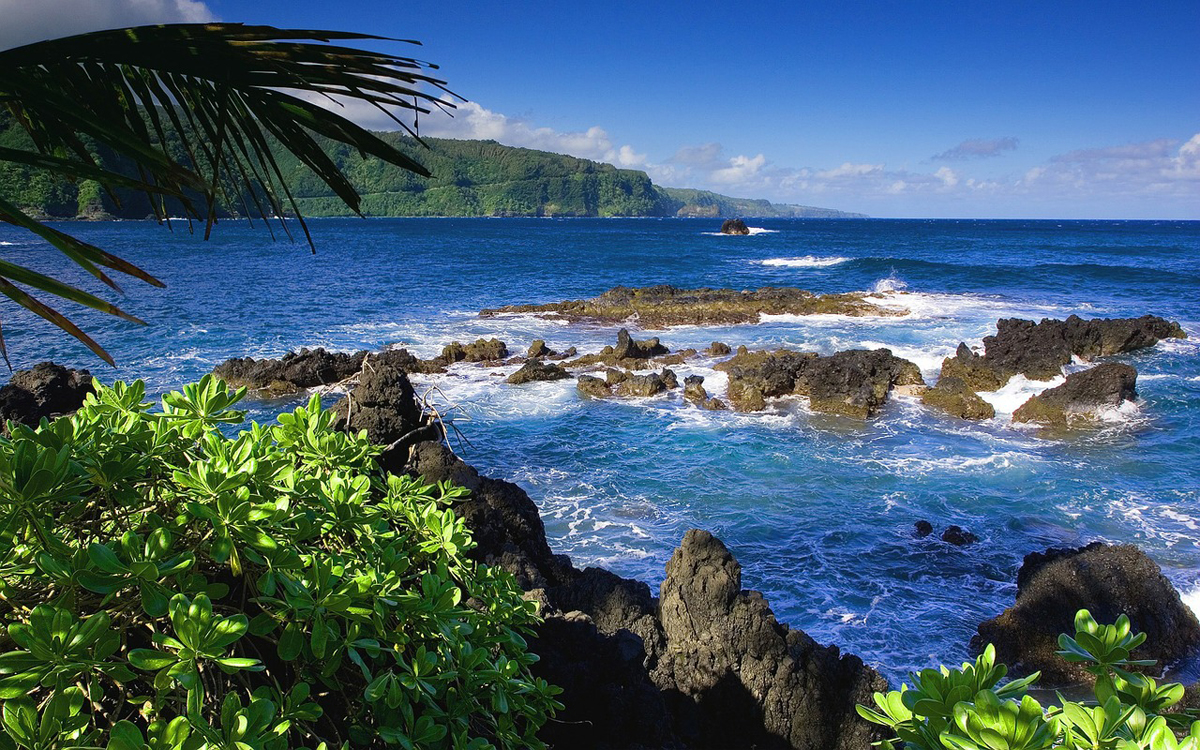 Hawaii sets new records for arrivals & visitor spending