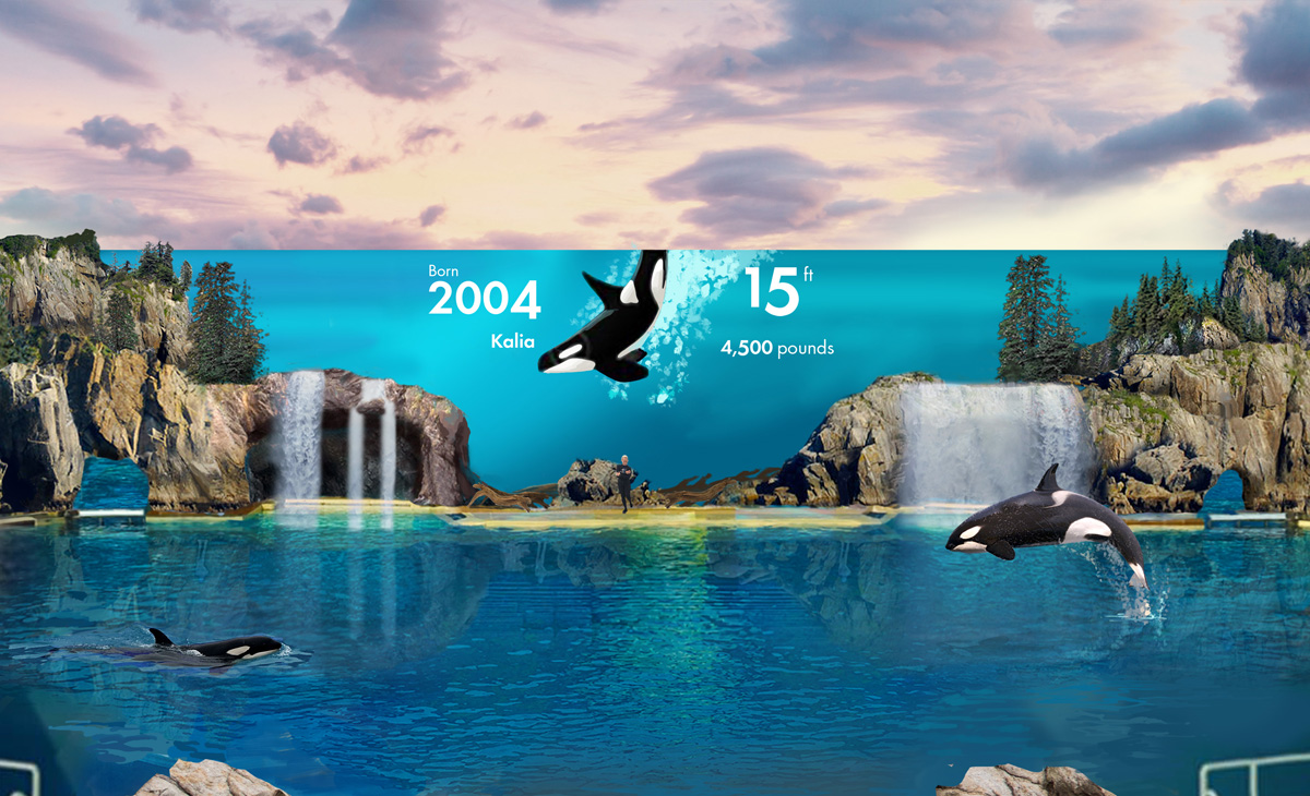 Canadians can save at SeaWorld & Busch Gardens