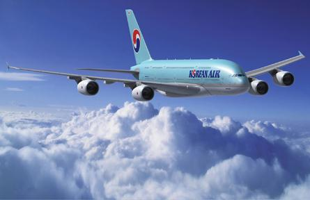 Korean Air unveils frequent flyer program - for pets