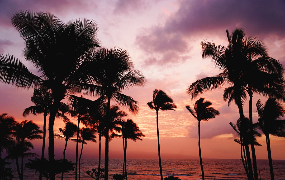 Canadian arrivals & spend on the rise in Hawaii
