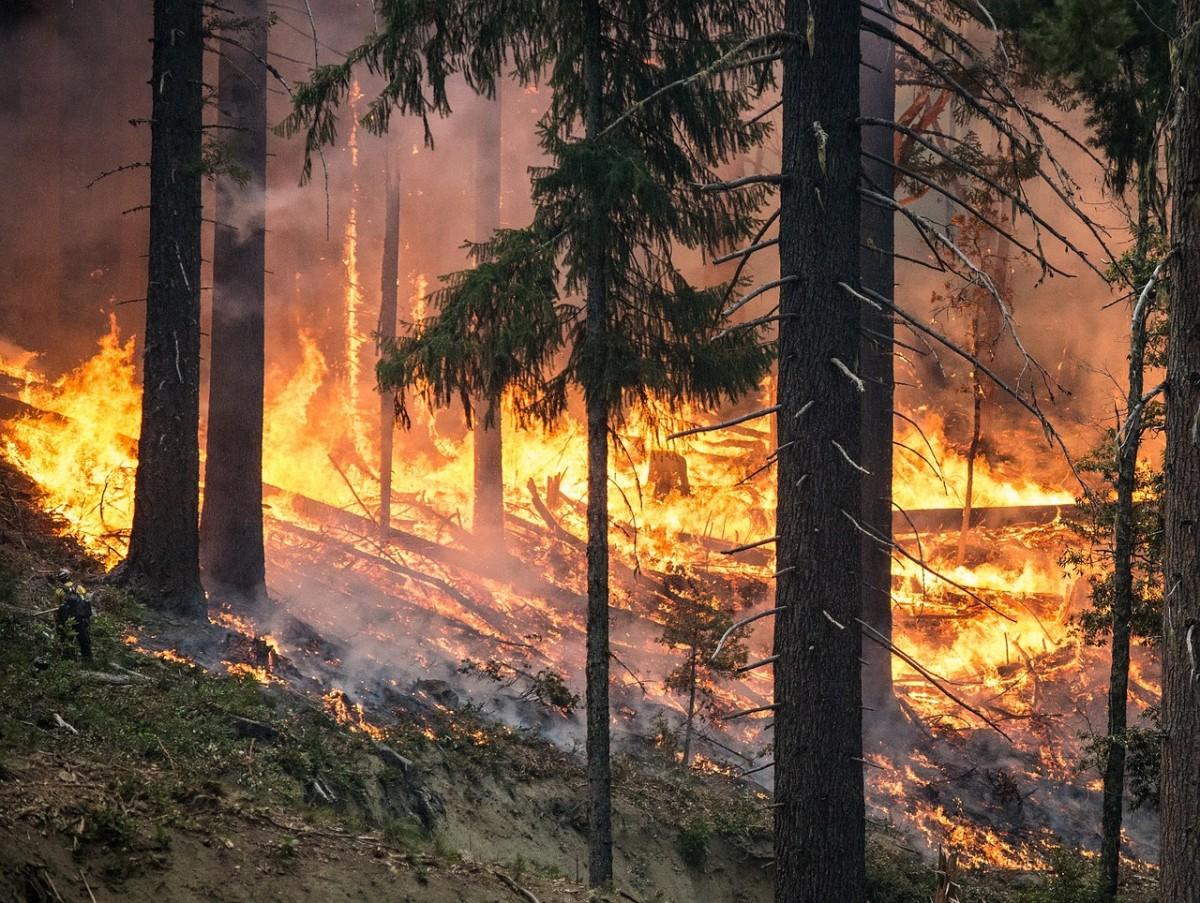 British Columbia continues to burn