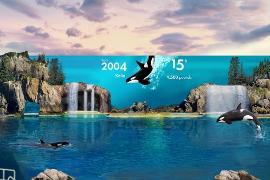 SeaWorld's Canadian pricing returns