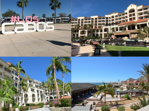 Agents explore Los Cabos with ACV