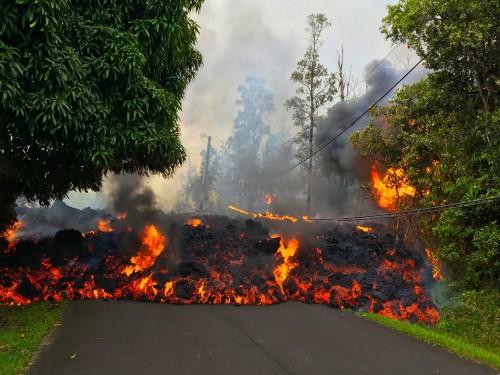 Hawaii forward bookings remain up despite Kilauea slump