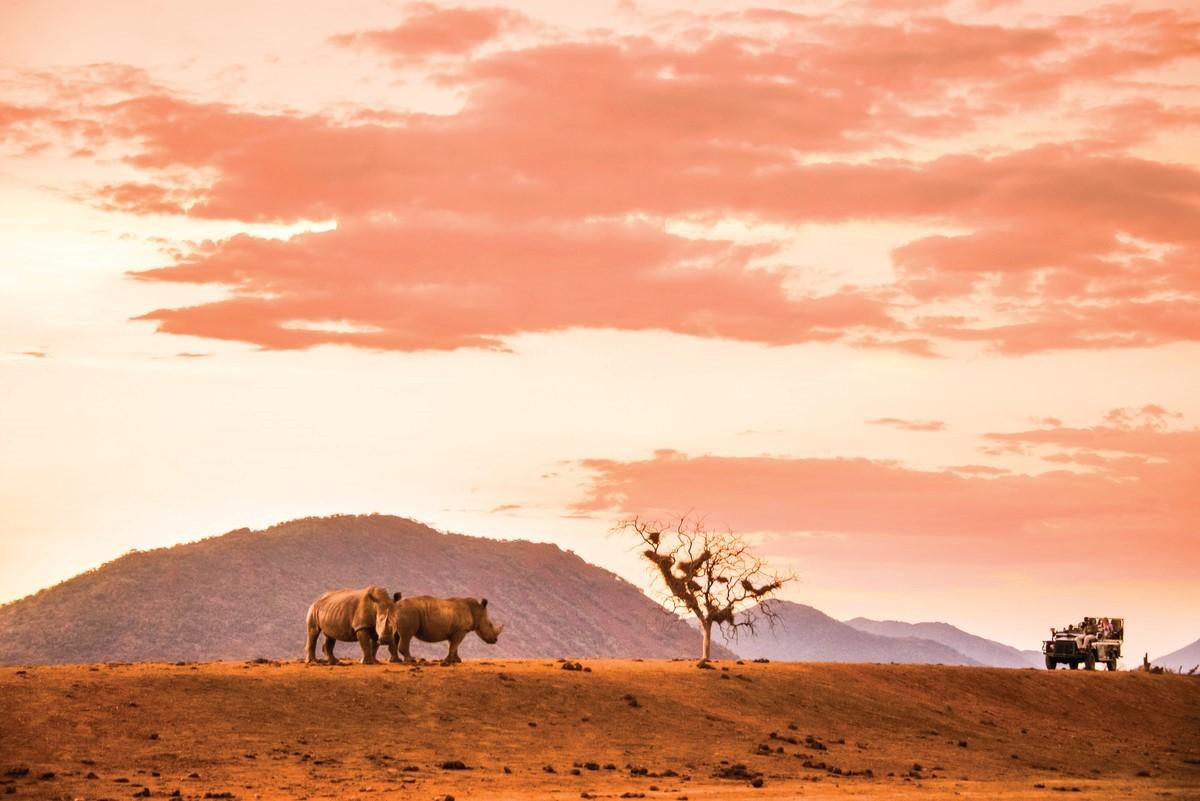Contiki's Africa 2019 program now ready to book