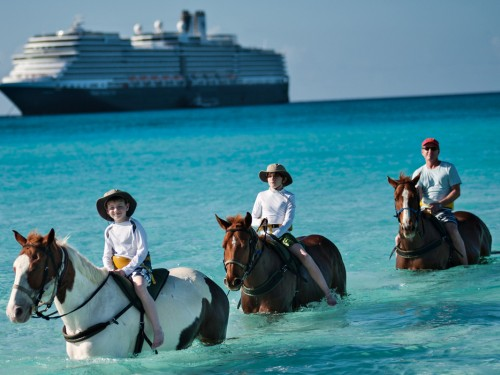 HAL has 8 ships & 100+ cruises to the Caribbean