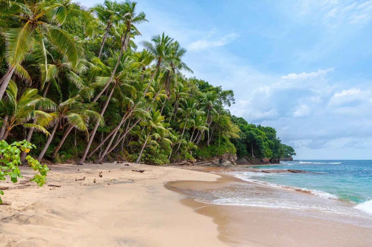 ACV announces its Mega FAMs to Mexico & the Caribbean