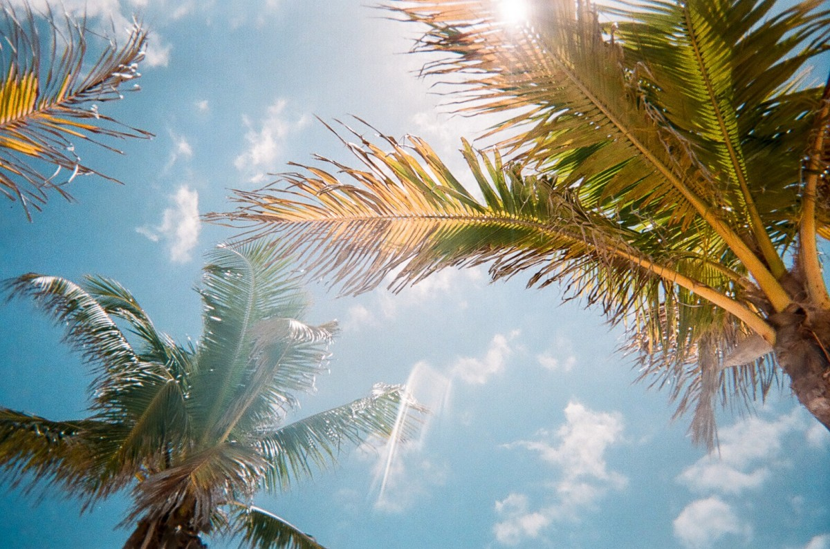 Destino Xcaret's La Casa de la Playa opens in 2019