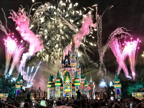 The Most Magical Place On Earth just got a little pricier