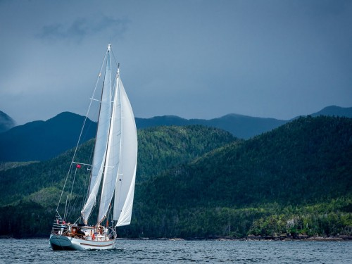 Outer Shores returning to Haida Gwaii next year