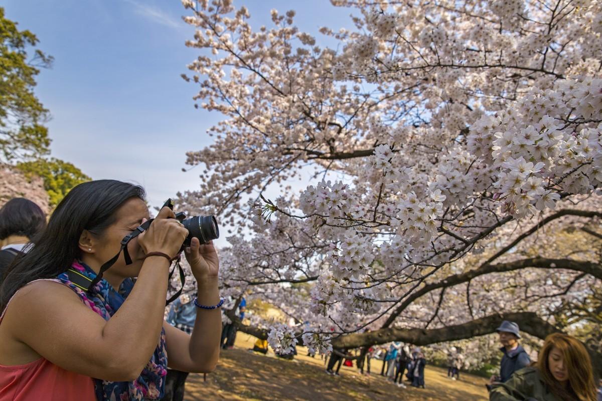 G Adventures & Tokyo Tourism team up