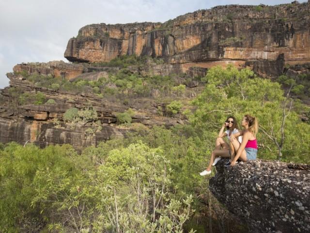 Contiki's 2020-21 Australia program features koala breakfasts, turtle hospitals and more