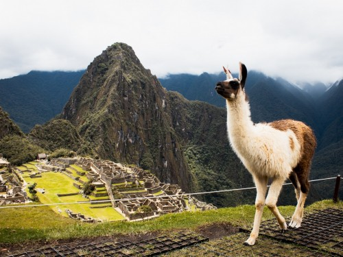 Goway's 2019-20 Central & South America brochure now available