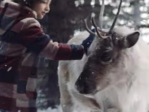 VIDEO: The Lost Reindeer takes flight with Air Canada this holiday season